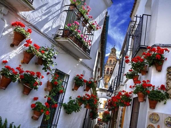 Испания3